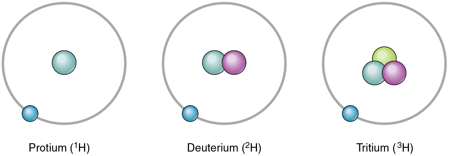 This figure shows the three isotopes of hydrogen: hydrogen, deuterium, and tritium.