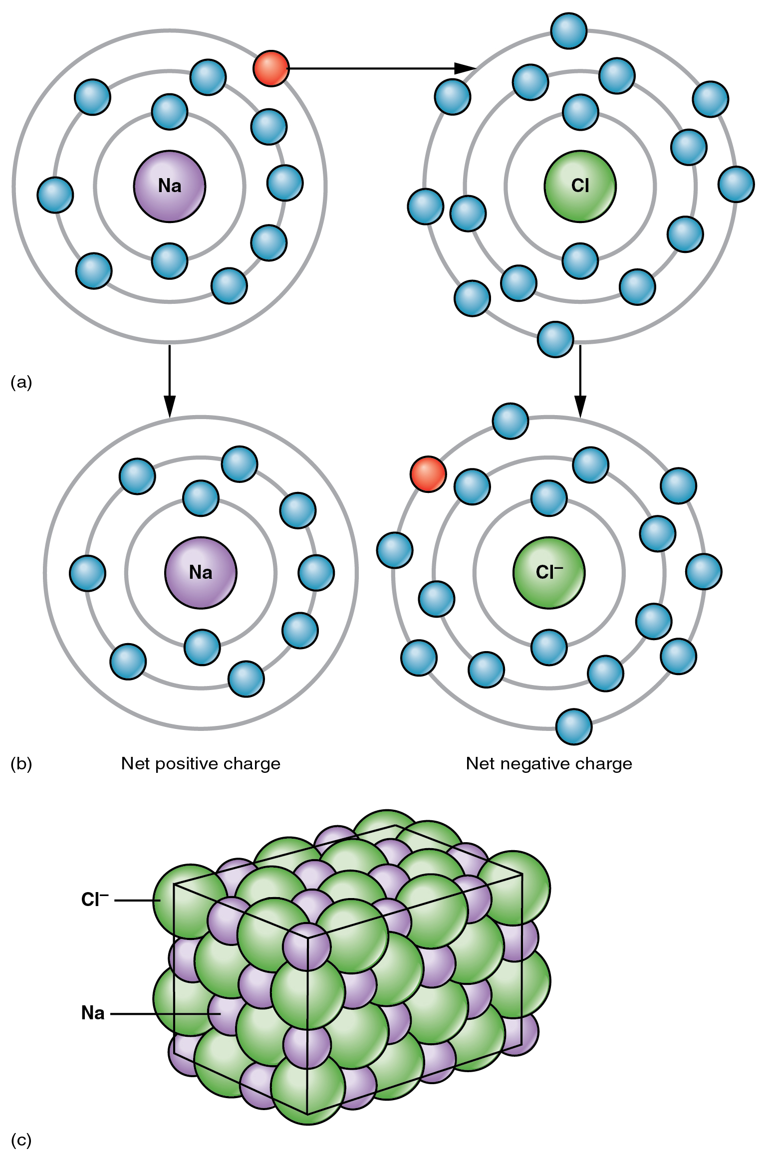 The top panel of this figure shows the orbit model of a sodium atom and a chlorine atom and arrows pointing towards the transfer of electrons from sodium to chlorine to form sodium and chlorine ions. The bottom panel shows sodium and chloride ions in a crystal structure.