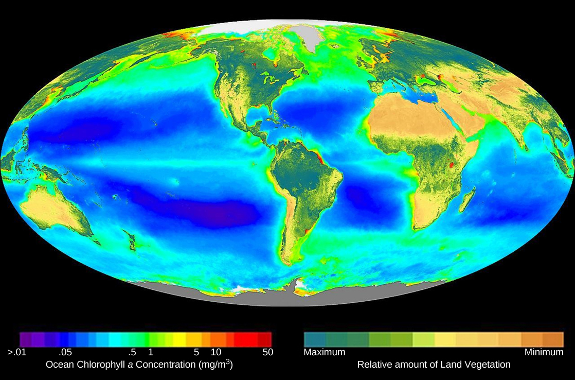 The image shows a map of the world, colored by the levels of chlorophyll a on land and in the ocean.