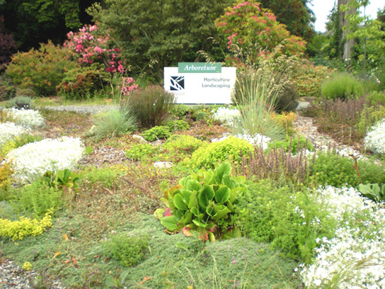 Photo shows a landscaped garden with a variety of flowers and bushes.