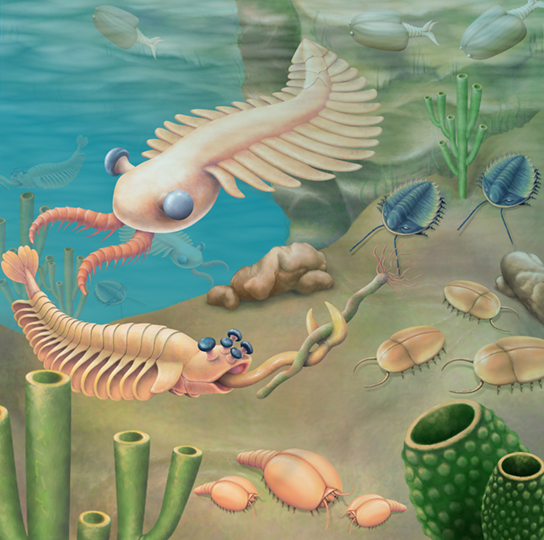The illustration shows a sea bed abundant with odd organisms, including tube-shaped worms anchored to the sea floor and animals that resemble cockroaches crawling along it. Swimming creatures somewhat resemble modern insects.