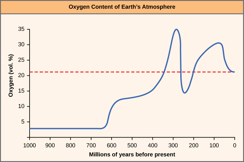 The chart shows the percent oxygen by volume in the Earth's atmosphere. Until 625 million years ago, there was virtually no oxygen. Oxygen levels began to rapidly climb around this time, and peaked around 275 million years ago, at about 35 percent. Between 275 and 225 million years ago, oxygen levels dropped precipitously to about 15 percent, and then climbed again and dropped to the modern-day concentration of 22 percent.