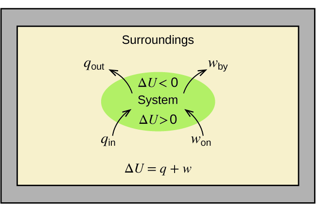 "A rectangular diagram is shown. A green oval lies in the center of a tan field inside of a gray box. The tan field is labeled ""Surroundings"" and the equation ""Δ U = q + w"" is written at the bottom of the diagram. Two arrows face into the green oval and are labeled ""q subscript in"" and ""w subscript on"" while two more arrows face away from the oval and are labeled ""q subscript out"" and ""w subscript by."" The center of the oval contains the terms ""Δ U > 0"", ""System,"" and ""Δ U < 0."""