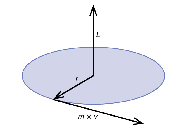 "The diagram shows a blue circle. At the center, there is an arrow labeled, ""L,"" which points upward. Another arrow labeled, ""r,"" points from the center to the edge of the circle. Another arrow labeled, ""m times v"" extends from the point where the r-labeled arrow reaches the edge of the circle."