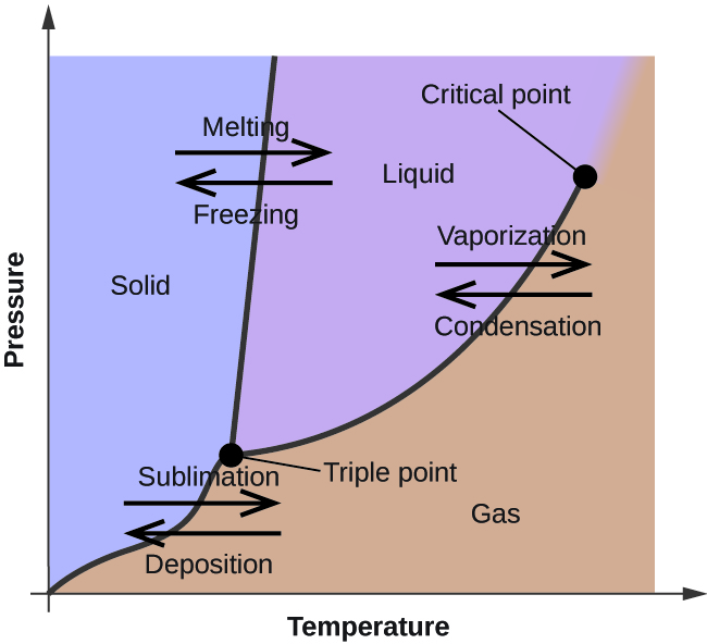 "A graph is shown where the x-axis is labeled ""Temperature"" and the y-axis is labeled ""Pressure."" A line extends from the lower left bottom of the graph sharply upward to a point that is a third across the x-axis. A second line begins at the lower third of the first line at a point labeled ""triple point"" and extends to the upper right corner of the graph where it is labeled ""critical point."" The two lines bisect the graph area to create three sections, labeled ""solid"" near the top left, ""liquid"" in the top middle and ""gas"" near the bottom right. A pair of horizontal arrows, one left-facing and labeled ""deposition"" and one right-facing and labeled"" sublimation,"" are drawn on top of the bottom section of the first line. A second pair of horizontal arrows, one left-facing and labeled ""freezing"" and one right-facing and labeled ""melting"", are drawn on top of the upper section of the first line. A third pair of horizontal arrows, one left-facing and labeled ""condensation"" and one right-facing and labeled ""vaporization,"" are drawn on top of the middle section of the second line."