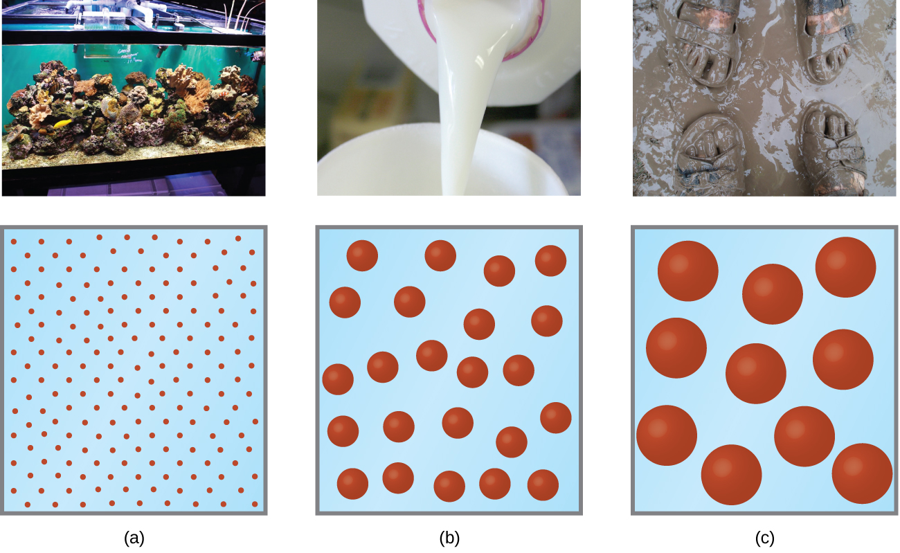 This figure contains three photos and correponding particle diagrams. In a, a photo of an aquarium containing fish is shown. The particle diagram beneath it shows 90 tiny red spheres. In b, a photo is shown of milk being poured into a cup. The corresponding particle diagram shows about 25 medium sized red spheres.In c, a photo is shown of two pairs of sandal clad feet in mud. The particle diagram below shows 10 fairly large red spheres.