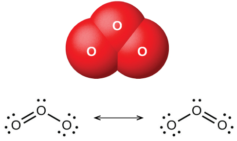 "A space filling model shows three atoms labeled, ""O,"" bonded to one another in a triangular shape. Two Lewis structures connected by a double ended arrow are shown as well. In the left image, an oxygen atom with one lone pair of electrons is double bonded to another oxygen with two lone pairs of electrons to the left and single bonded to an oxygen with three lone pairs of electrons to the right. The right image is a mirror image of the left."