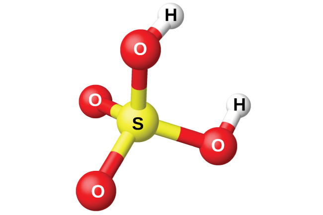 "A space filling model shows a yellow atom labeled, ""S,"" bonded on four sides to red atoms labeled, ""O."" Two of the red atoms are bonded to white atoms labeled, ""H."""