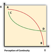 The Perception of Continuity