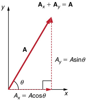 ]A dotted vector A sub x whose magnitude is equal to A cosine theta is drawn from the origin along the x axis. From the head of the vector A sub x another vector A sub y whose magnitude is equal to A sine theta is drawn in the upward direction. Their resultant vector A is drawn from the tail of the vector A sub x to the head of the vector A-y at an angle theta from the x axis. Therefore vector A is the sum of the vectors A sub x and A sub y.