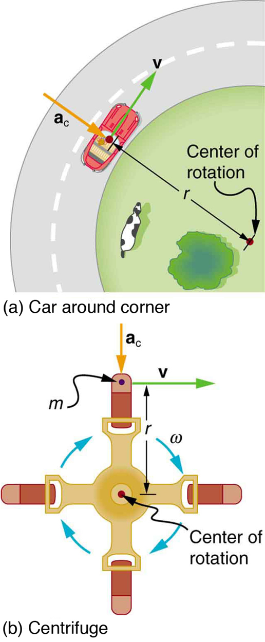 In figure a, a car shown from top is running on a circular road around a circular path. The center of the park is termed as the center of this circle and the distance from this point to the car is taken as radius r. The linear velocity is shown in perpendicular direction toward the front of the car, shown as v the centripetal acceleration is shown with an arrow pointed towards the center of rotation. In figure b, a centrifuge is shown an object of mass m is rotating in it at a constant speed. The object is at the distance equal to the radius, r, of the centrifuge. The centripetal acceleration is shown towards the center of rotation, and the velocity, v is shown perpendicular to the object in the clockwise direction.