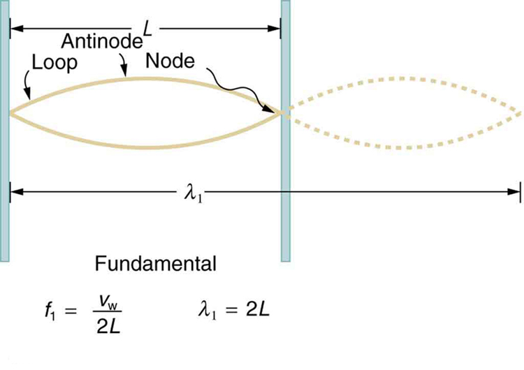 The graph shows a wave with wavelength lambda one equal to L, which has two loops. There three nodes and two antinodes in the figure. The length of one loop is L.