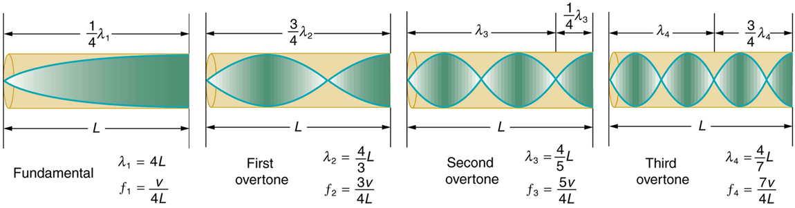 There are four tubes, each of which is closed at one end. Each tube has resonance waves reflected at the closed end. In the first tube, marked Fundamental, the wavelength is long and only one-fourth of the wave is inside the tube, with the maximum air displacement at the open end. In the second tube, marked First overtone, the wavelength is slightly shorter and three-fourths of the wave is inside the tube, with the maximum air displacement at the open end. In the third tube, marked Second overtone, the wavelength is still shorter and one and one-fourth of the wave is inside the tube, with the maximum air displacement at the open end. In the fourth tube, marked Third overtone, the wavelength is shorter than the others, and one and three-fourths of the wave is inside the tube, with the maximum air displacement at the open end.