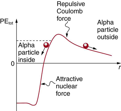 The image shows potential energy curve. The curve starts from negative Y axis to positive Y axis and alpha particles are shown trapped inside the nucleus due to attractive nuclear force. The alpha particles outside the range of nuclear force experience the repulsive Coulomb force which keeps them outside the nucleus.