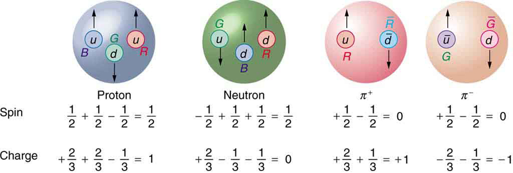 The figure shows four spheres that are labeled proton, neutron, positive pion, and negative pion. The proton sphere contains a blue up quark with spin up, a green down quark with spin down, and a red up quark with spin up. Below the figure are two equations. The upper equation is labeled spin and reads one half plus one half minus one half equals one half, and the lower equation is labeled charge and reads plus two thirds plus two thirds minus one third equals one. The neutron sphere contains a green up quark with spin down, a blue down quark with spin up, and a red down quark with spin up. The corresponding spin equation reads minus one half plus one half plus one half equals one half, and the charge equation reads plus two thirds minus one third minus one third equals zero. The positive pion sphere contains a red up quark with spin up and an anti red anti down quark with spin down. The corresponding spin equation reads plus one half minus one half equals zero, and the charge equation reads plus two thirds plus one third equals plus one. The negative pion sphere contains a green anti up quark with spin up and an anti green down quark with spin down. The corresponding spin equation reads plus one half minus one half equals zero, and the charge equation reads minus two thirds minus one third equals minus one.