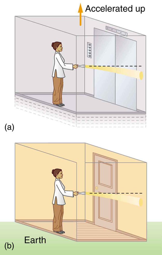 Figure a shows a person holding a flashlight and standing in an elevator that is accelerating upward. The flashlight is held horizontally, but the light beam from the flashlight hits the facing wall slightly below the horizontal path. Figure b shows the same thing but the elevator is at rest on the Earth.