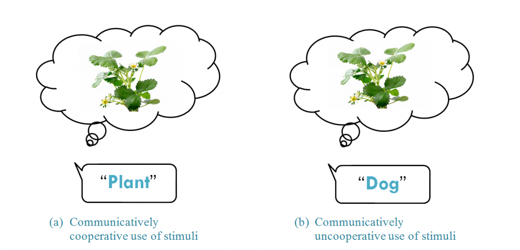 inferential model of communication