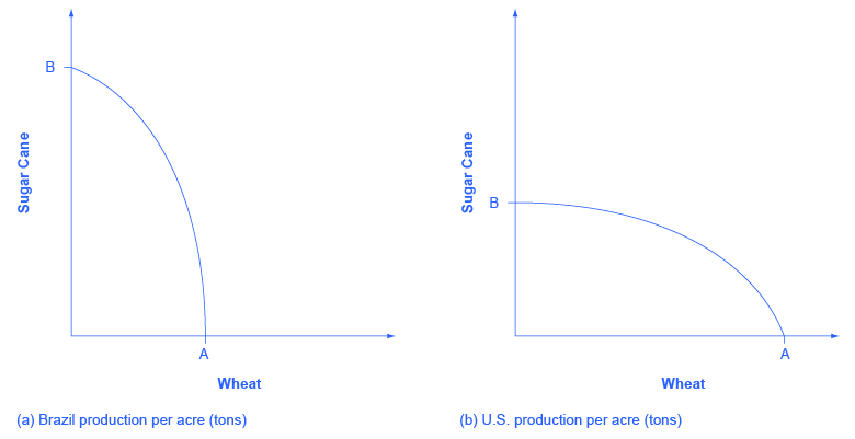 "This graph shows two images. Both images have y-axes labeled ""Sugar Cane"" and x-axes labeled ""Wheat."" In image (a), Brazil's Sugar Cane production is nearly double the production of its wheat. In image (b), the U.S.'s Sugar Cane production is nearly half the production of its wheat."