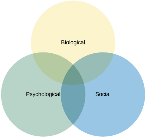Three circles overlap in the middle. The circles are labeled Biological, Psychological, and Social.
