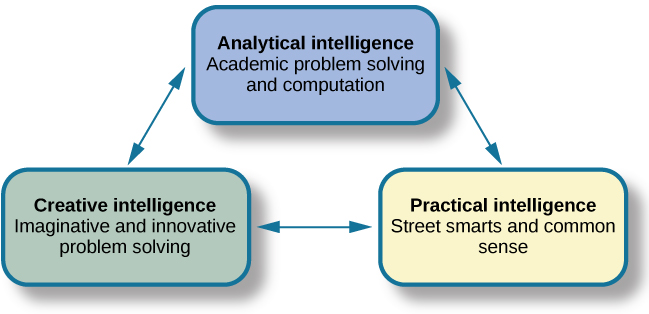 "Three boxes are arranged in a triangle. The top box contains ""Analytical intelligence; academic problem solving and computation."" There is a line with arrows on both ends connecting this box to another box containing ""Practical intelligence; street smarts and common sense."" Another line with arrows on both ends connects this box to another box containing ""Creative intelligence; imaginative and innovative problem solving."" Another line with arrows on both ends connects this box to the first box described, completing the triangle."