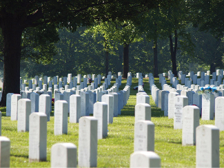 A cemetery with many gravestones among the grass and trees is shown.