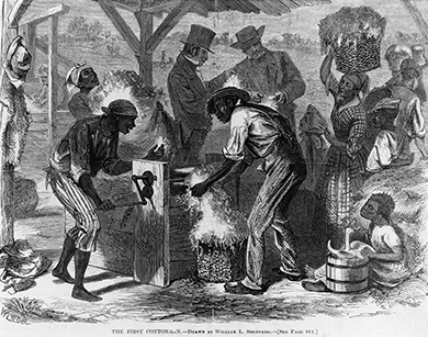 An engraving depicts male and female African American slaves of all ages working with a cotton gin, while well-dressed white men talk and examine some cotton in the background.