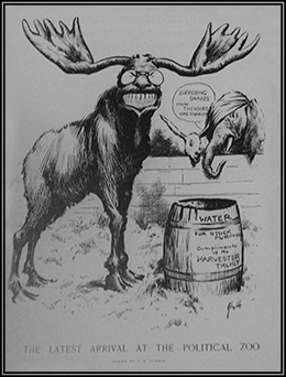 "A cartoon entitled ""The Latest Arrival at the Political Zoo"" shows the Progressive Bull Moose, whose large grin and eyeglasses resemble Roosevelt's. Before the bull moose is a barrel bearing the words ""Water/For Stock Purposes/Compliments of the Harvester Trust."" From behind a fence, a donkey and elephant watch; the elephant, whose head is bandaged, says ""Suffering Snakes! How Theodore Has Changed!"""