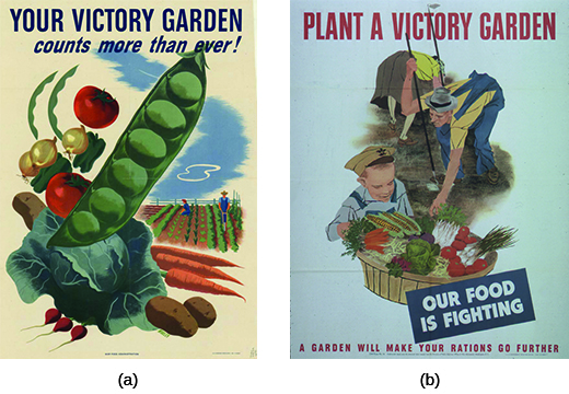 "Poster (a) reads ""Your Victory Garden counts more than ever!"" and features a series of bright vegetables in the foreground with a farm scene in the background. Poster (b) reads ""Plant a Victory Garden. Our Food is Fighting. A Garden Will Make Your Rations Go Further."" An illustration of a man and a woman tending farm vegetables is shown, with a small boy in the foreground smiling at a large basket of freshly picked vegetables."