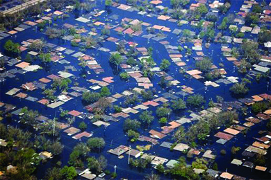 An aerial photograph shows the tops of rows of houses and trees that are otherwise entirely underwater.